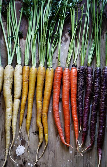 Multi colored raw carrots
