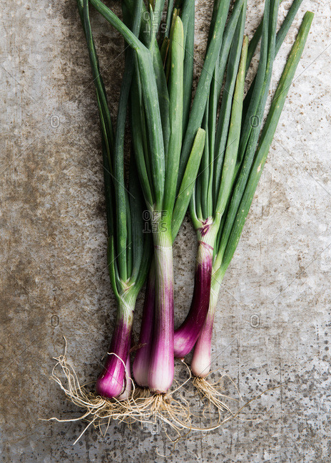 Raw red scallions