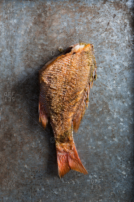 Half of a grilled fish