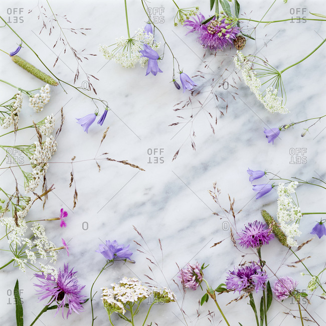 Wildflowers on marble background - Offset