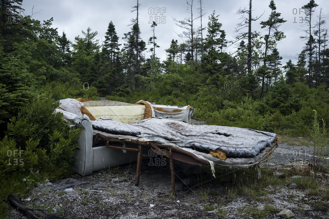 An abandoned fold out couch in the woods