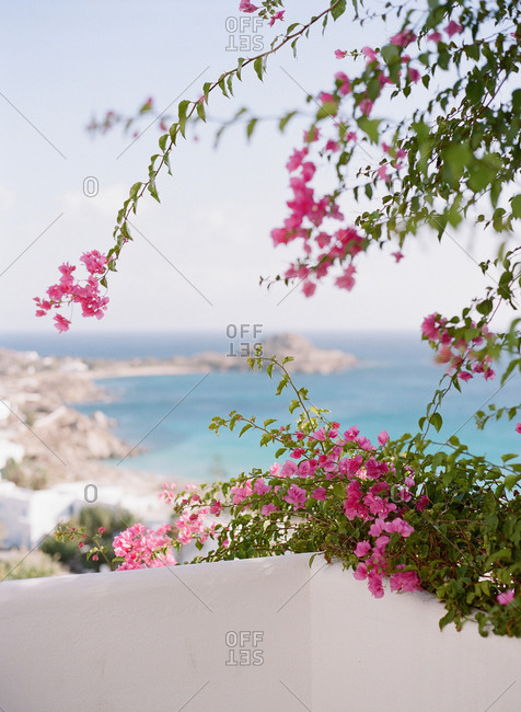 View of Greek island coastline through bougainvillea on terrace