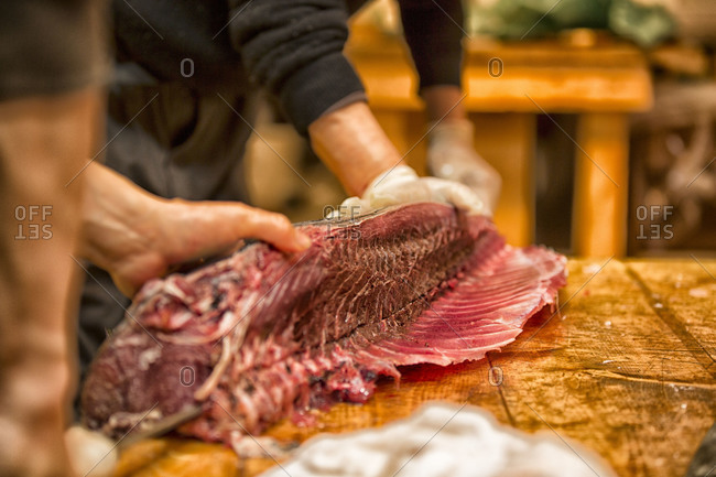 The spine of a fish at the Tsukiji Fish Market