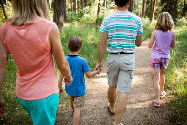 Family walking in summer woods