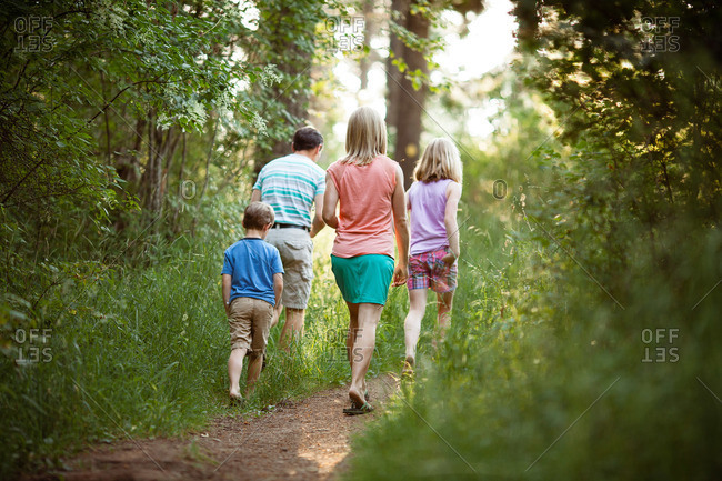 Family walking together in summer woods