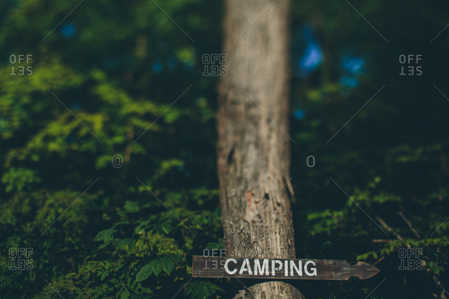 A sign pointing to a campsite in the woods