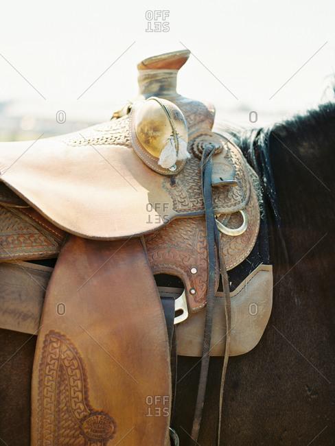A saddle on a horse