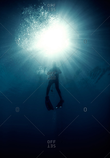 Person scuba diving in the water