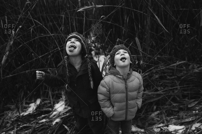 Children catching snowflakes on their tongues