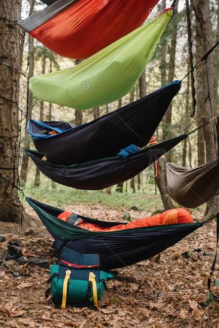 Hammocks strung in layers between trees