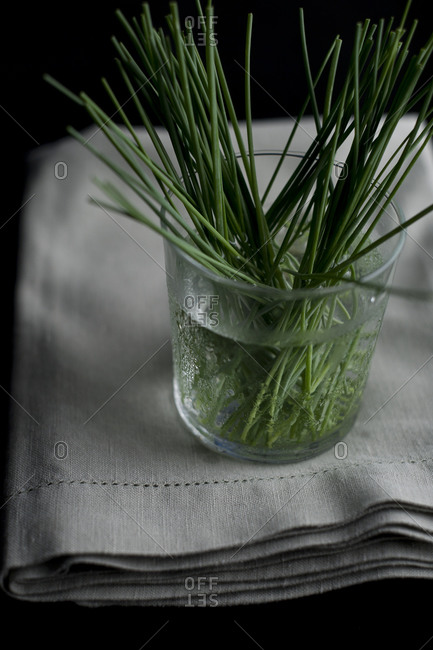 Fresh cut chives in a glass of water on linen napkin