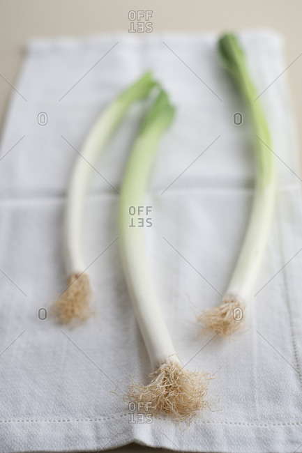 Three scallions with roots attached on linen cloth