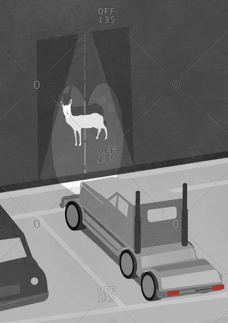 Truck lights shining on deer on wall