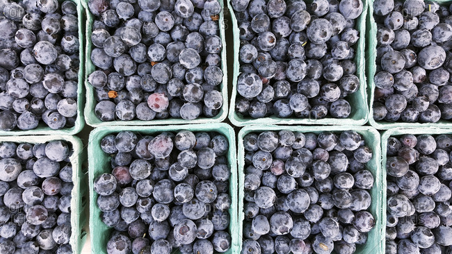 Overhead view of pints of fresh blueberries