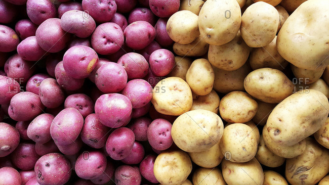 Overhead view of red and white potatoes