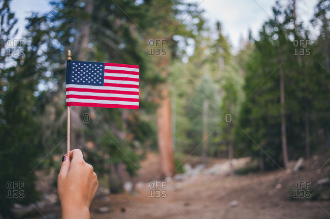 Woman's hand holding American flag