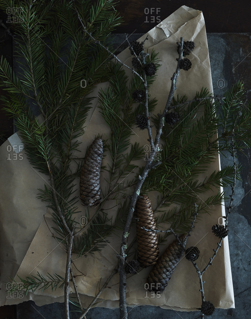 Materials for a wreath