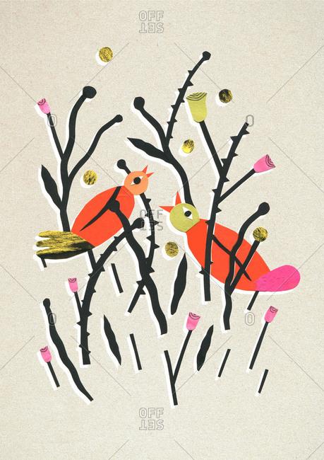 Two birds cheeping in bush