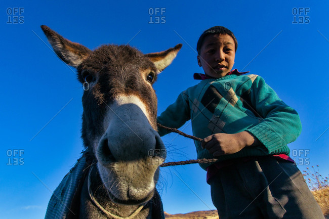 Himachal Pradesh, India - October 19, 2013: Portrait of a Langza boy with his donkey in Spiti, Himachal Pradesh, India