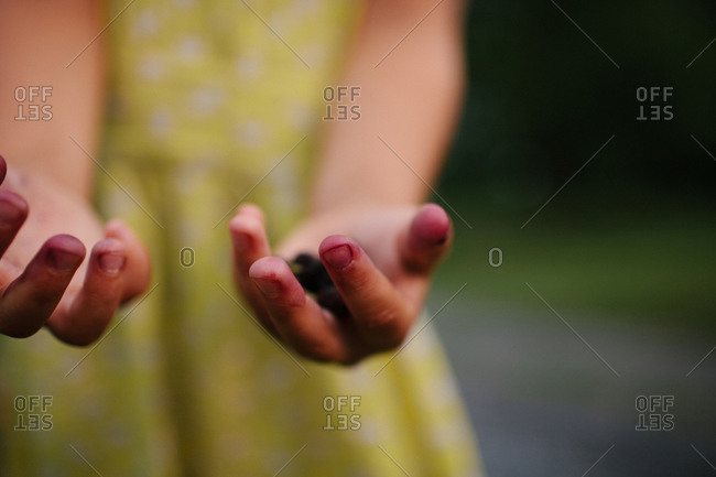 Stains on girl's hands from picking fruits