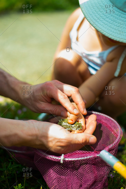 Man helps his young daughter hold a frog
