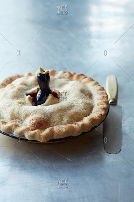 Ceramic pie bird - Offset Collection