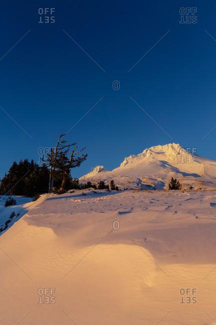 Mount Hood at sunset - Offset