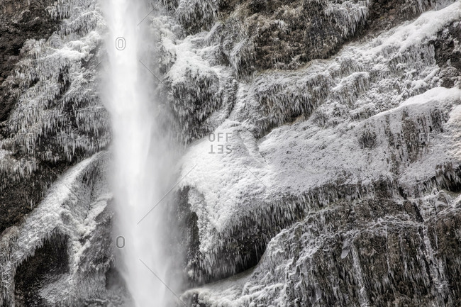 Icicles on a cliff at Multnomah Falls, Oregon