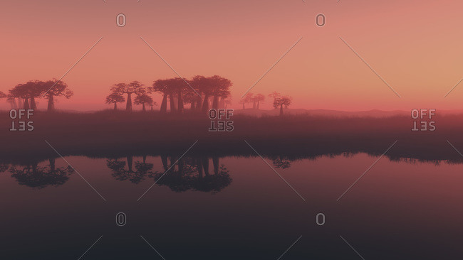 Copse of tropical trees reflected in a tranquil lake at sunset