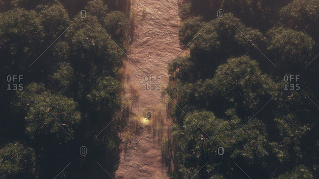 Aerial view of vehicle on a dirt road cutting through a dense forest