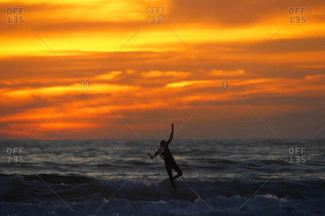 A surfer rides a wave at sunset at La Jolla Shores Beach in San Diego, CA