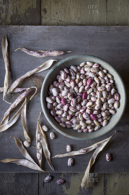 Shelled cranberry beans in a bowl with pods on the side