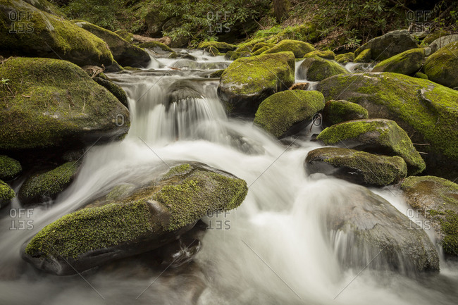 Water rushing over moss covered rock in the Great Smoky Mountain National Park in Tennessee