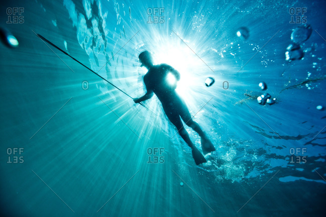 A spear fisherman swimming through the water off the coast of Catalina Island, CA
