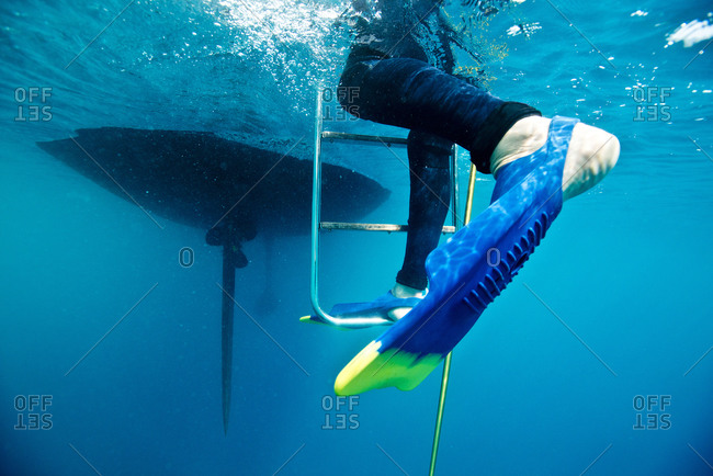 A diver climbing ladder back to boat