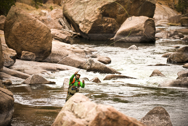 Action shot of a fly fisherman in Cheeseman Canyon, Colorado