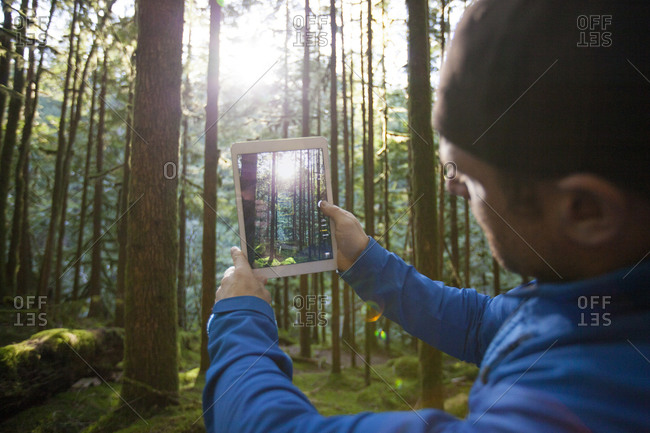 A man uses a tablet to take a picture of the morning sun shining through a lush forest