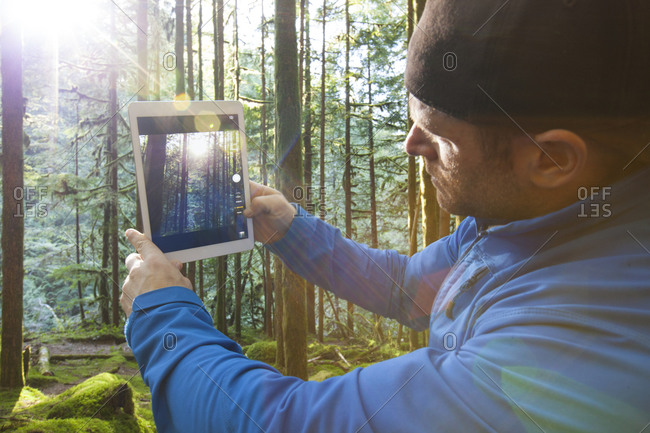 A man uses a tablet to takes a picture of morning sun rays shining through a lush forest