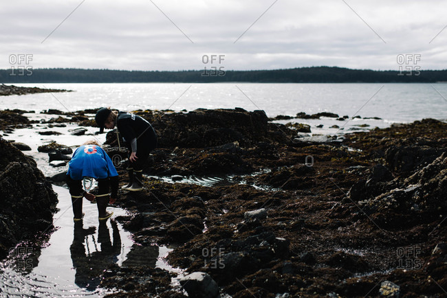 Children collecting shells on the shore