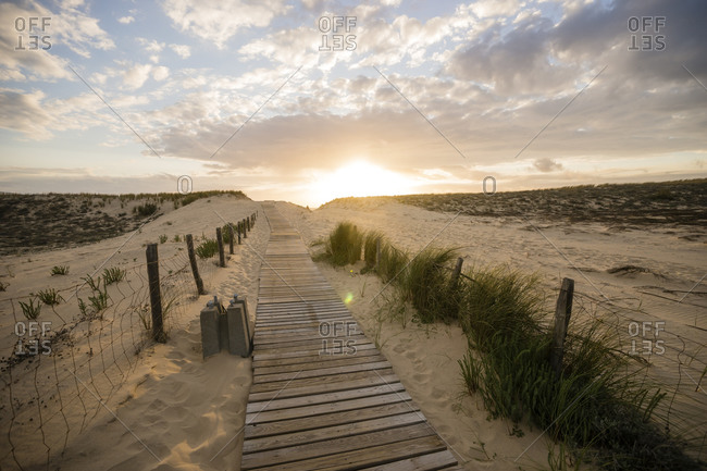 Wooden boardwalk in the beach dunes at evening twilight