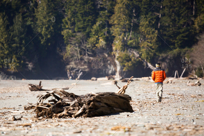 Hiker walking past large pieces of driftwood on Vancouver Island beach