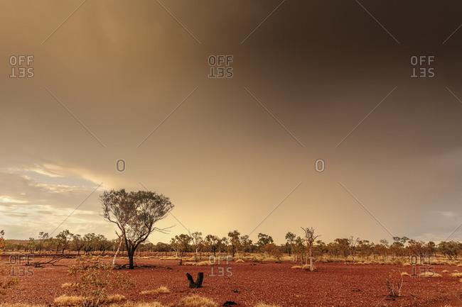 Thunderstorm roles through desert in Western Queensland, Australia