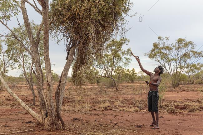 Cloncurry, Queenstown, Australia - January 25, 2014: Australian man hunting in Western Queensland