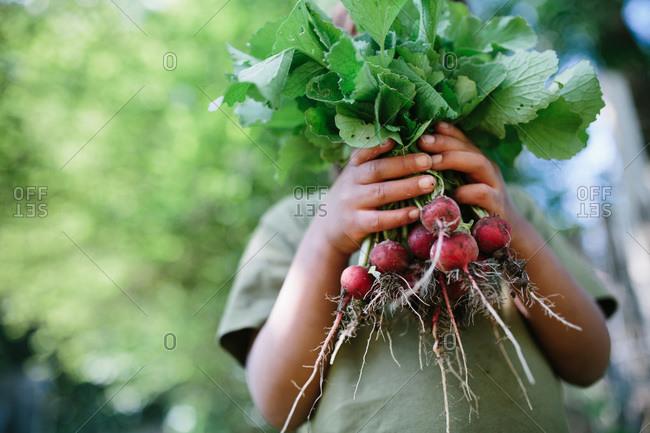 Child holding radishes
