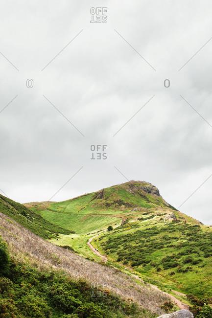 Path running up verdant hill