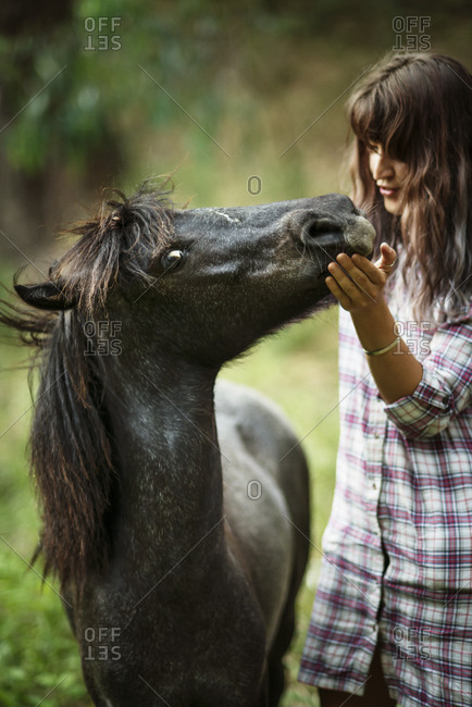 A woman touches the muzzle of a pony
