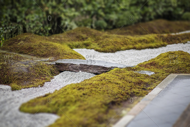 A rock and gravel in between patches of moss in a Japanese rock garden