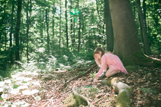 Girl exploring a forest - Offset