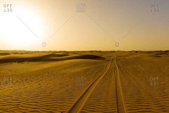 Tracks in a desert at sunset in the United Arab Emirates