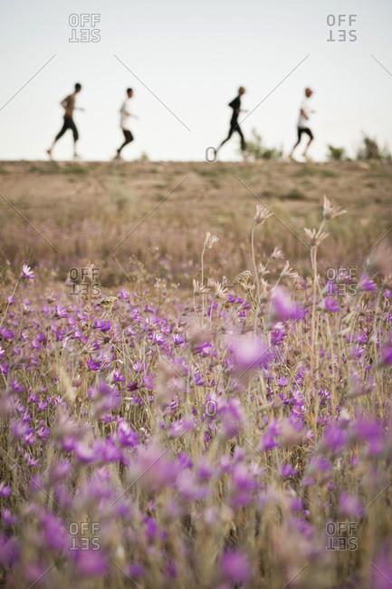 Four people running, Jambil Province, Kazakhstan